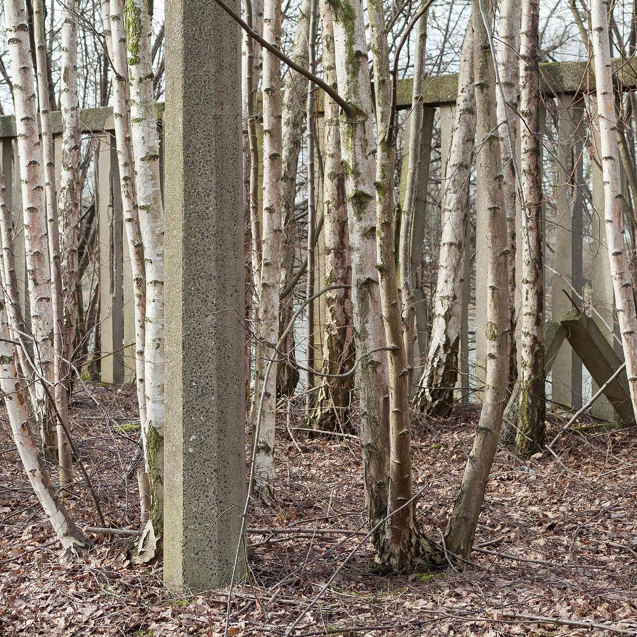 Mark Wohlrab - Industriewald Ruhrgebiet - Felix Schoeller Photoaward